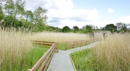 walton-lake-boardwalk-and-hide