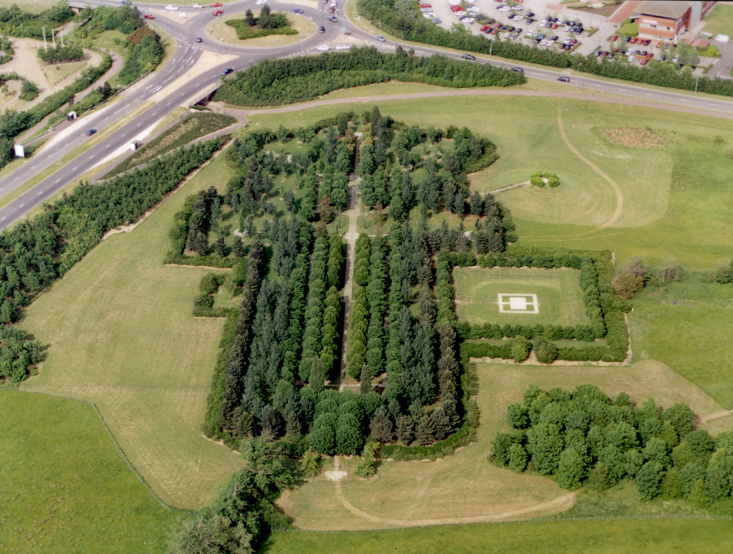 Tree-Cathedral-aerial-view-trees