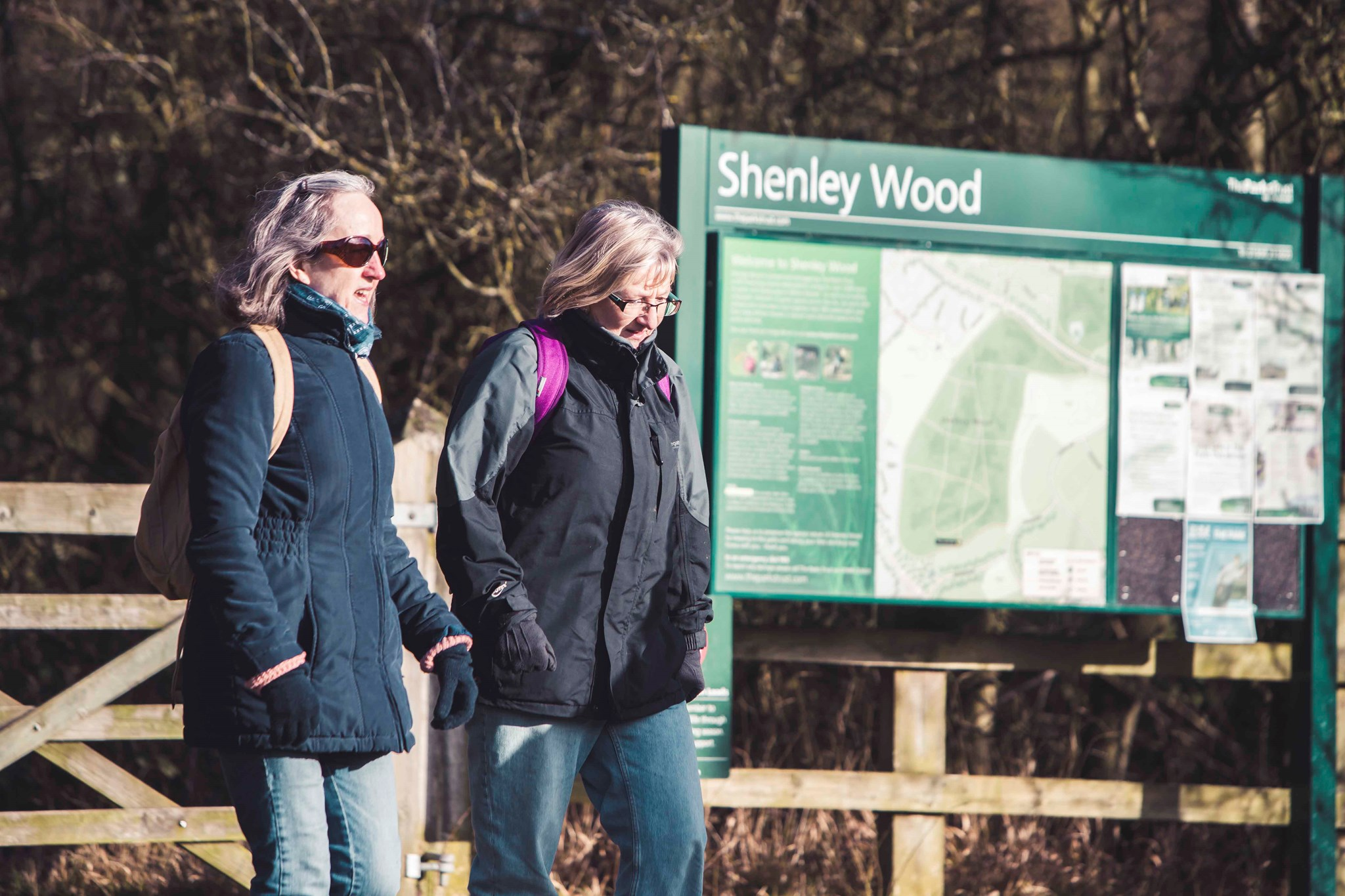 Network Walk Shenley_12.jpg