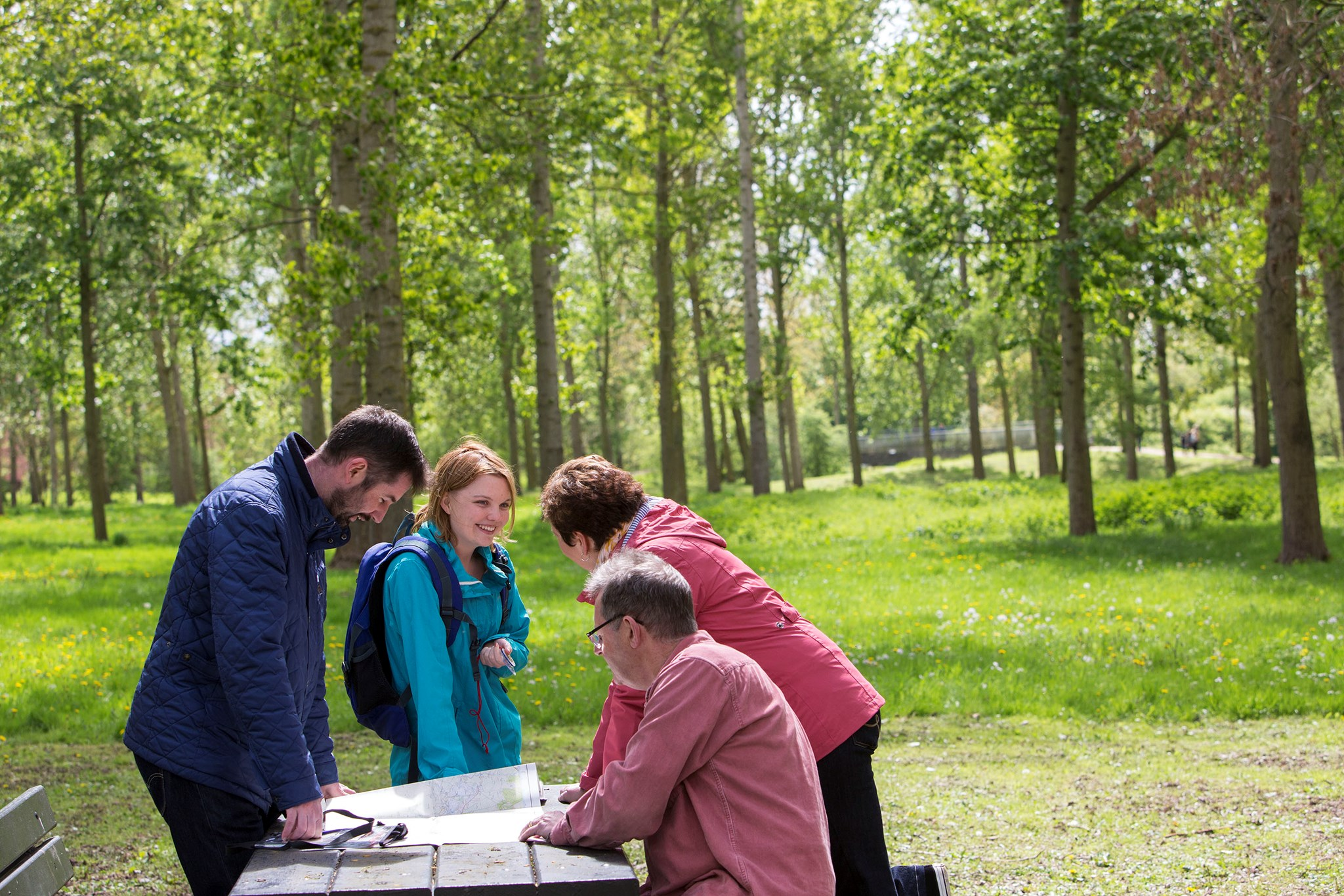 Orienteering-woods-maps-bench-people