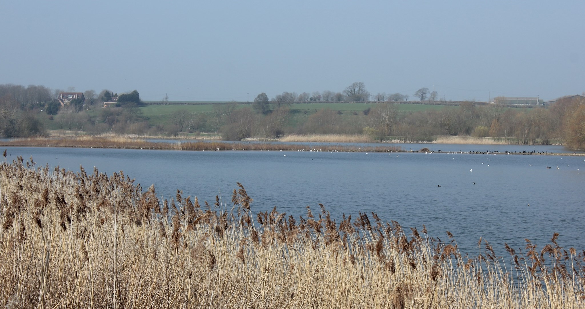 Linford Lakes Nature Reserve.jpg (1)