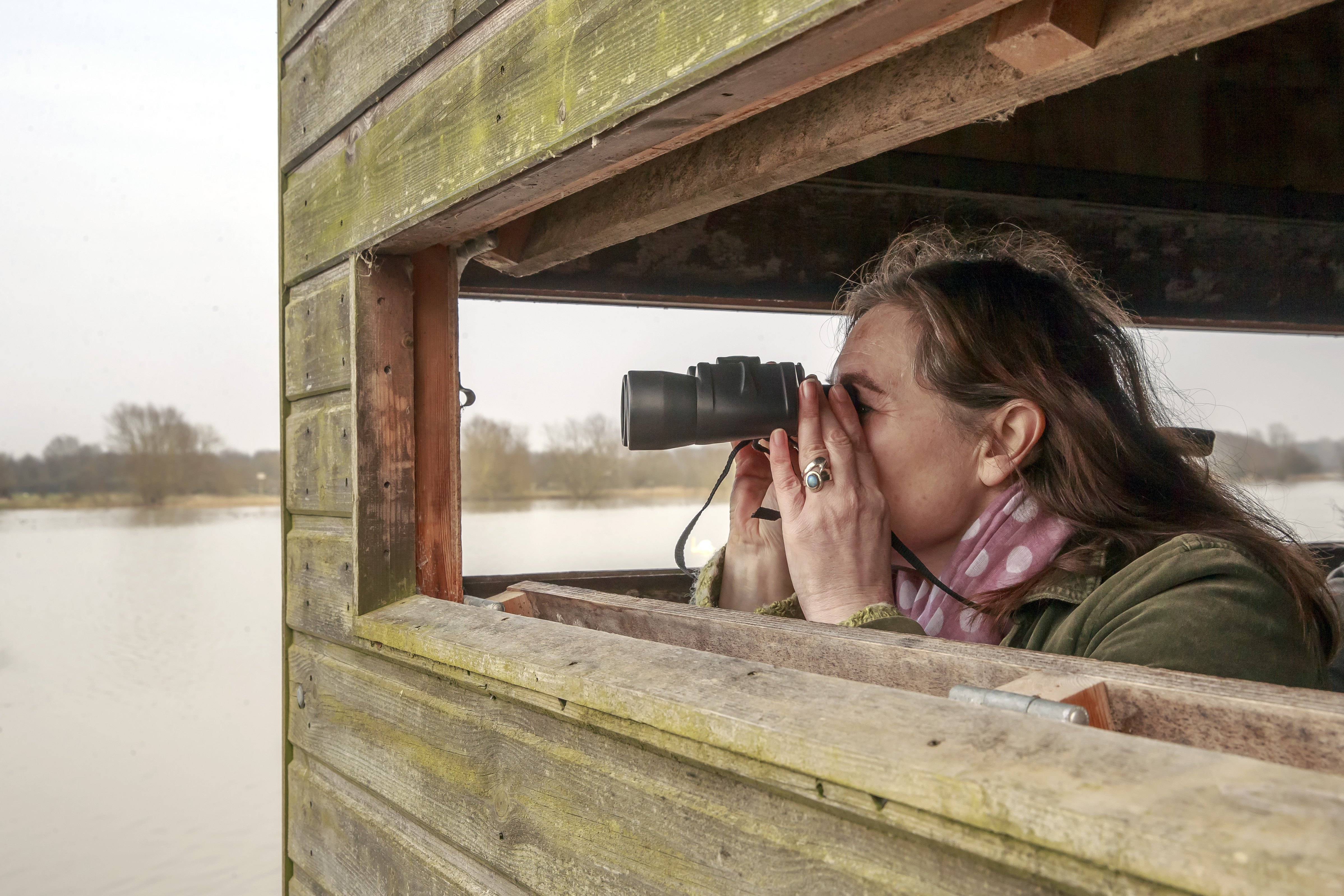 Discover Bird Watching, bird hide, binoculars