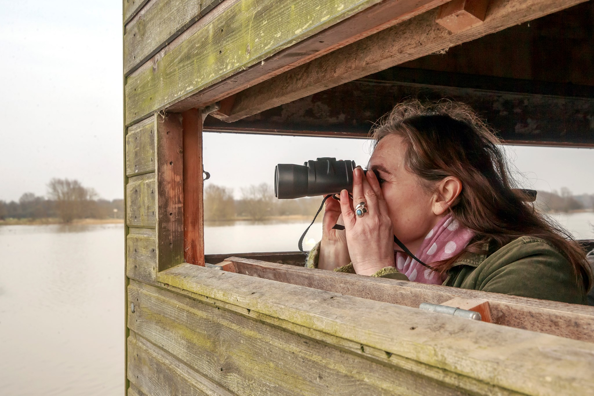 Discover Bird Watching, bird hide, binoculars (1)