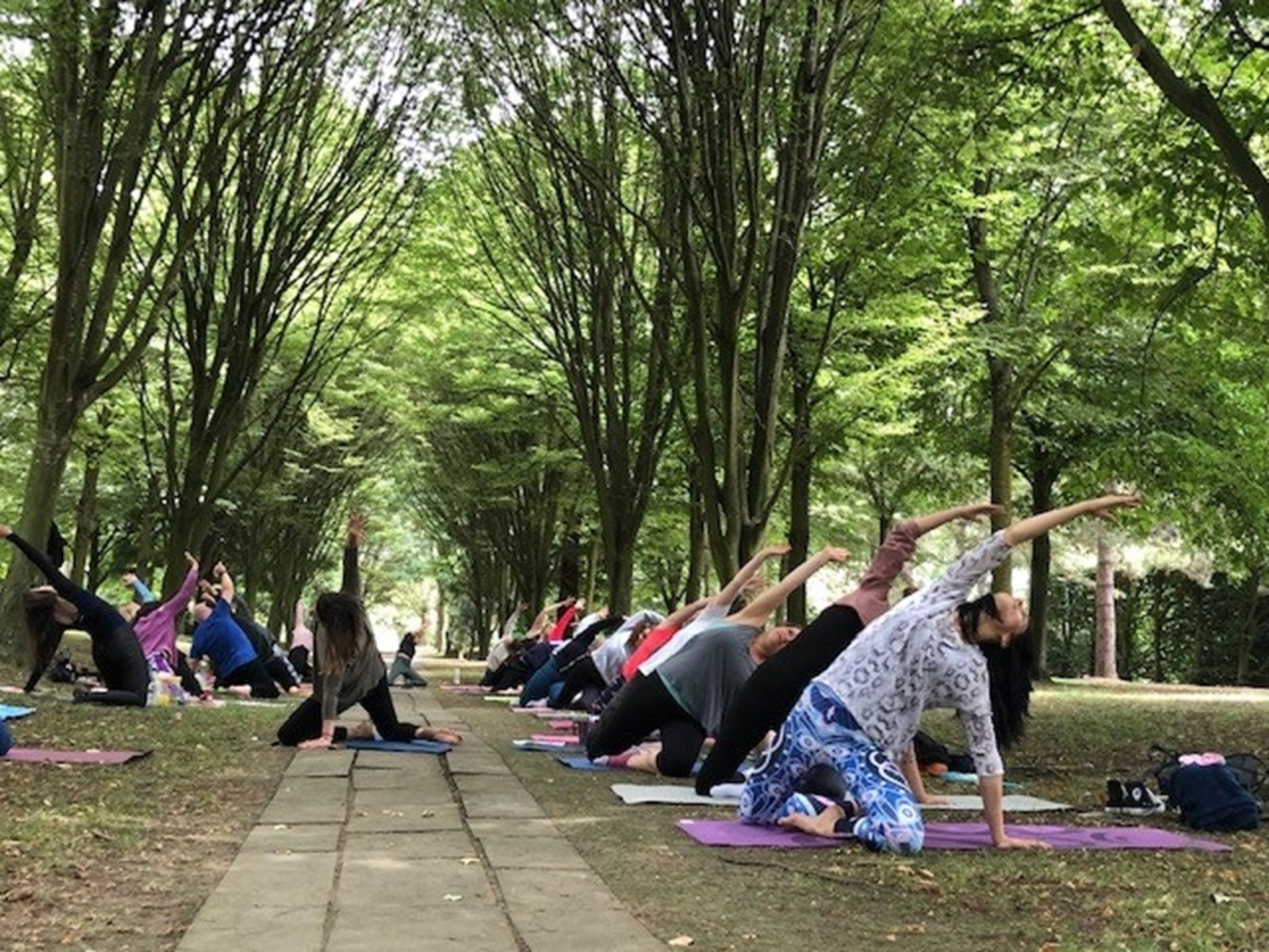 yoga in the park July.jpg